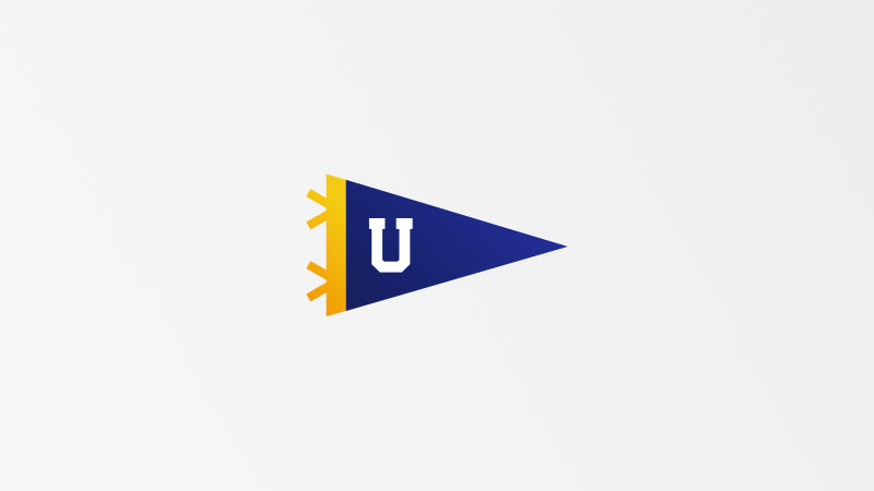 Illustration of a university flag.